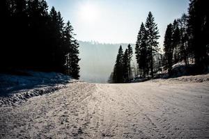backlit ski slope photo