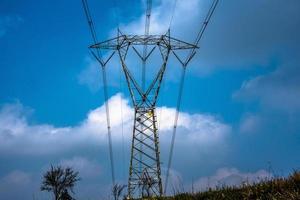 20210313 high voltage pylon and tree photo