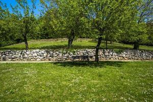 2021427 Sovizzo bench with trees photo