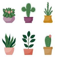 Potted plants collection, cartoon design. Succulents and home plants. Set of house indoor plant vector in flat style.