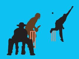 Cricket Action Shots on illustration graphic vector