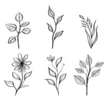 bundle of six flowers drawing nature ecology icons vector