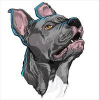 amantes de los perros pitbull vector