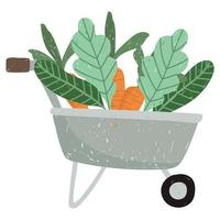 gardening wheelbarrow with carrots and leaves vector