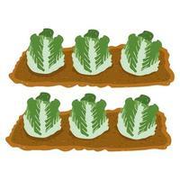 gardening cabbage fresh vegetable plantation hand drawn color vector