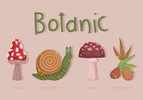 conjunto de dibujos animados botánicos vector
