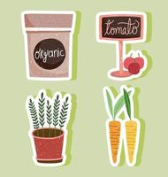 gardening pack organic potted plant carrots and tomatos vector