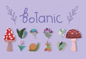 botanic natural banner vector