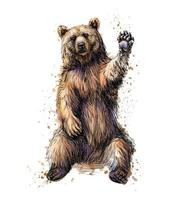 Friendly brown bear sitting and waving a paw from a splash of watercolor hand drawn sketch Vector illustration of paints