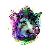 Portrait of a pig head from a splash of watercolor Chinese Zodiac Sign Year of Pig hand drawn sketch Vector illustration of paints