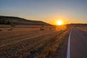 Empty road crossing agricultural field at sunset photo