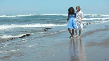 paar samen wandelen langs het strand video