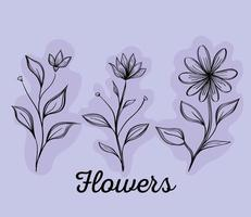 bundle of three flowers drawing nature ecology vector