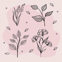 bundle of four flowers drawing nature ecology icons vector