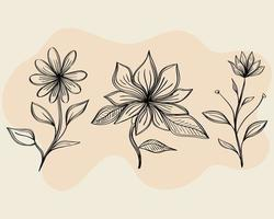 bundle of three flowers drawing nature ecology icons vector