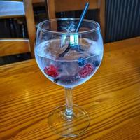 gin with berries photo