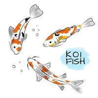 Set of koi carps fish vector