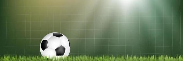 Soccer net and ball on the soccer field vector