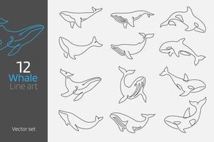 Set of whale continuous line art vector illustration