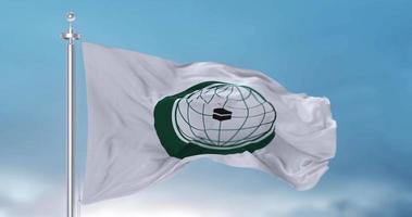 agitando bandeira da organização da cooperação islâmica oic video