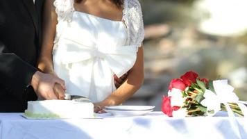 Bride and groom cutting wedding cake video