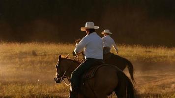 vaquero a caballo al atardecer, cámara lenta video