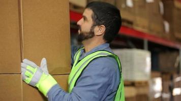portret van industrie werknemer in een verzendmagazijn video