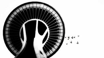 Silhouette group of birds Flying roaming abound top of the Building tower view 3D seamless animation on the white background seamless loop video