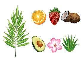 bundle of seven tropical fruits and plants set icons vector