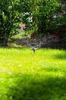 Rotating garden sprinkler watering grass photo