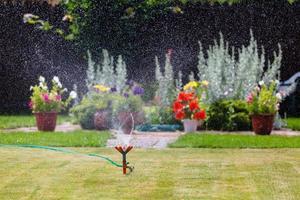 Garden sprinkler watering grass and flowers photo