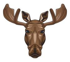 moose animal wild head colorful character icon vector