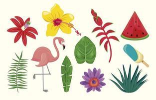 iconos de la temporada de verano vector