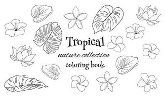 Tropical collection with exotic flowers and carved leaves in line style coloring book vector