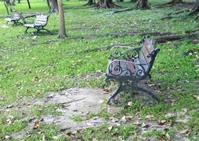 Metal garden bench in the park photo