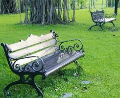 Metal garden benches in the park photo