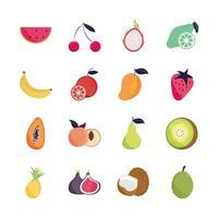 tropical fruits set vector