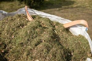 Close-up de hierba cortada en saco lleno foto