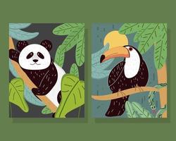 tucán panda tropical vector