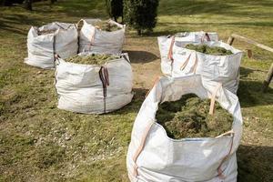 grupo de sacos llenos de hierba cortada foto