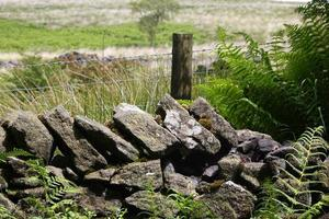 The Dry Stone Wall photo
