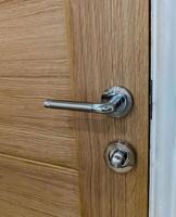 Oak Door and Chrome Handle photo