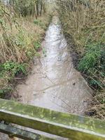 the narrow stream photo