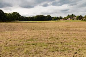 A Brown Field photo