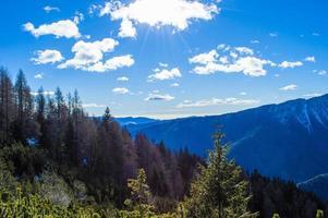 árboles y montañas foto