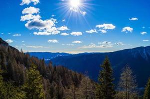 árboles y montañas durante el día. foto