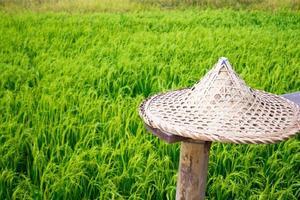 sombrero de paja en el campo de trigo foto
