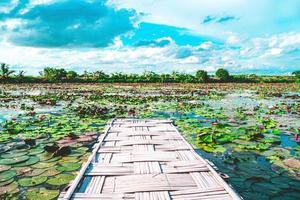 Puente de bambú con vista panorámica foto