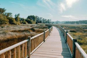 A wooden path through the beach during a super sunny day photo