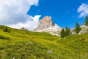 Meadows of the Dolomites photo
